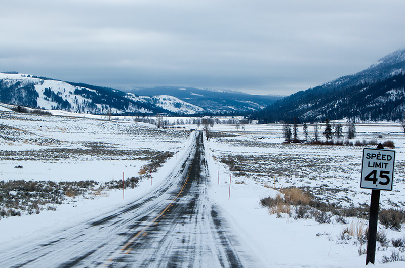 The road in to Lamar Valley on an early gray morning - Yellowstone National Park January 2010