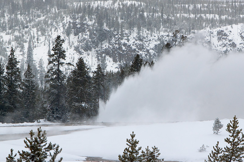 Daisy Geyser erupting in the distance on the Upper Geyser Basin in Yellowstone National Park January 2010