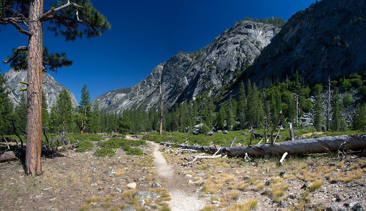 On the meadow of a loop return trail after leaving the Mist Falls Trail in Kings Canyon National Park, California