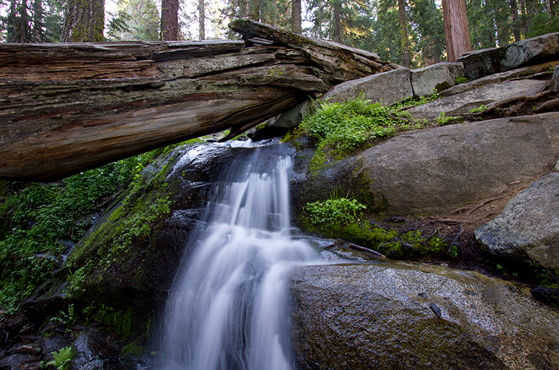Small waterfall on the Congress Trail in Sequoia National Park, California