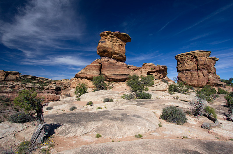 The trailhead of the Confluence Overlook Trail in Canyonlands National Park in Utah