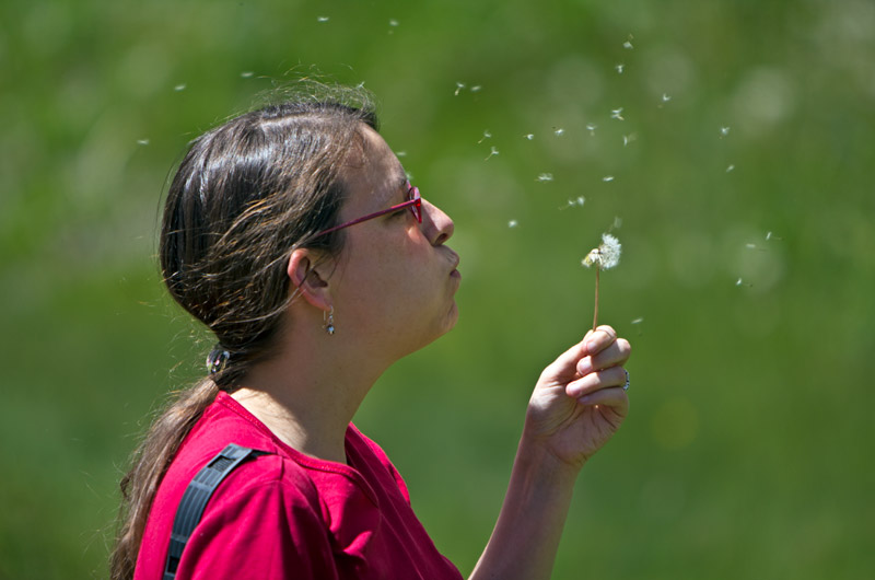 Caroline Wise blowing a dandelion, making a wish in the San Juan Mountains of Colorado
