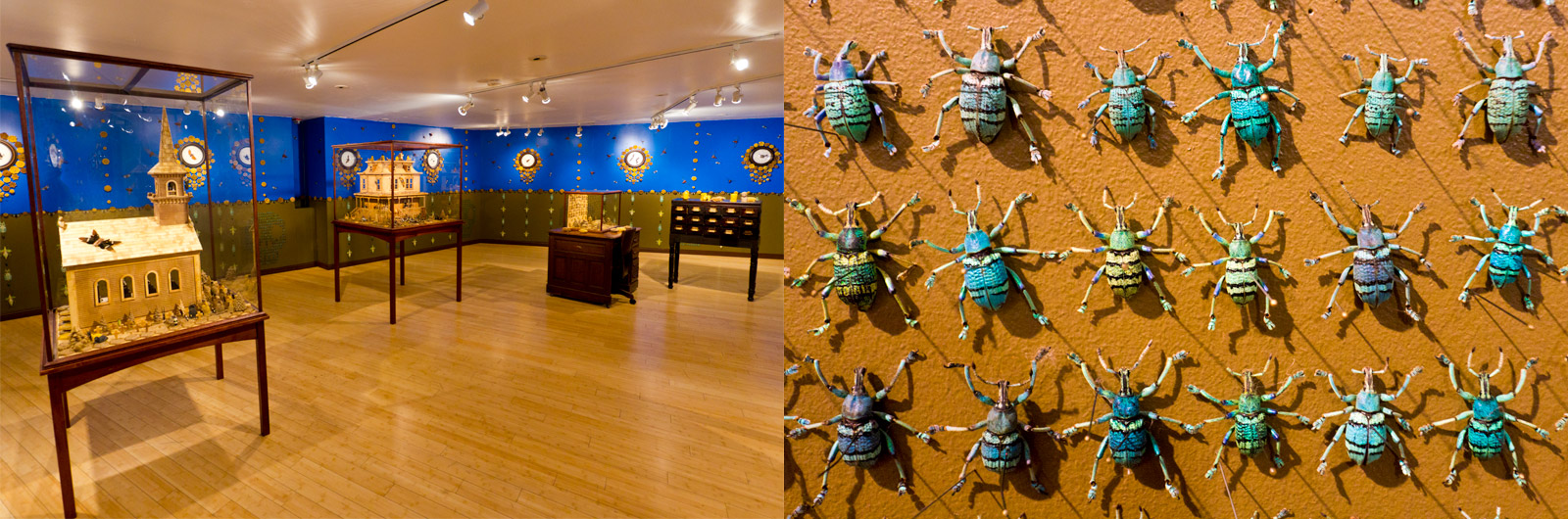 Inside the Craft and Folk Art Museum on Wilshire Blvd in Los Angeles, California to see an exhibit by Jennifer Angus titled: All Creatures Great and Small