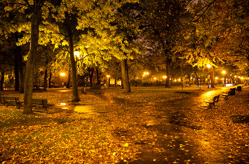 A quiet park on Rue de Square Saint Louis in Montreal, Canada