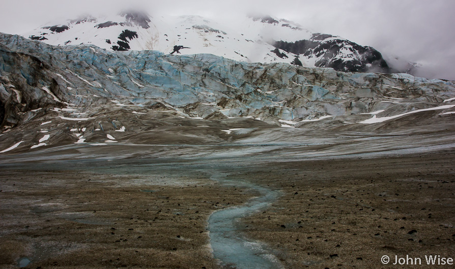A stream running over the Walker Glacier off the Alsek River in Alaska