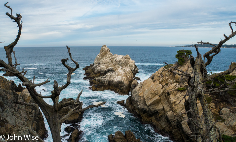 View while at Point Lobos State Natural Reserve
