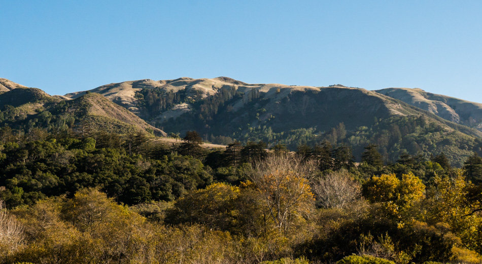 Coastal mountain view from Andrew Molera State Park