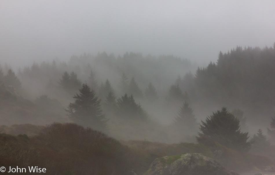 Lone Ranch on the Oregon Coast