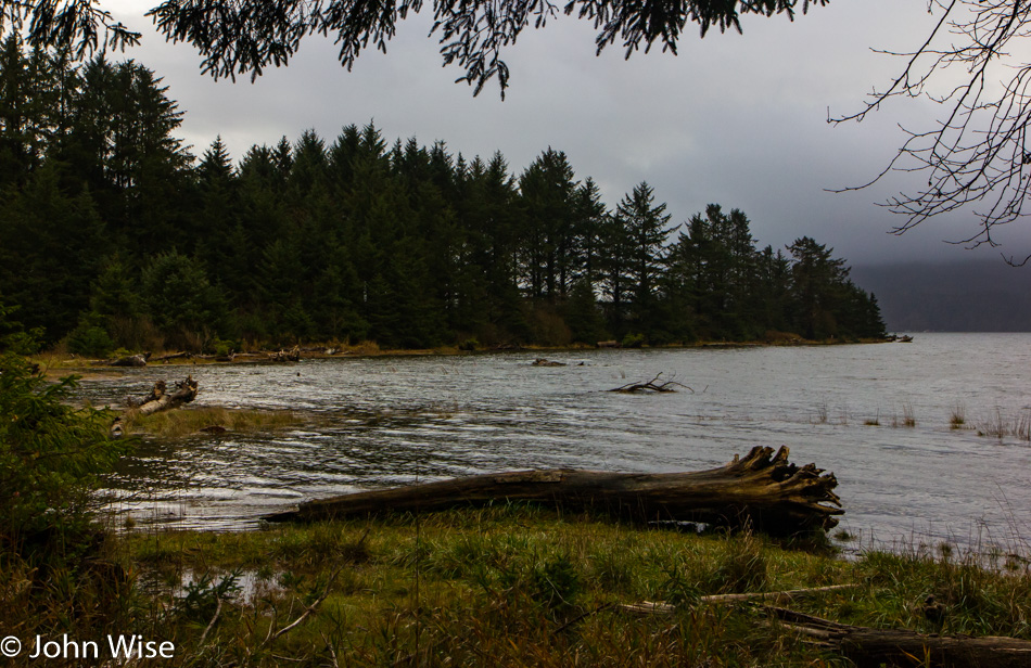 Kilchis Point Reserve in Bay City, Oregon